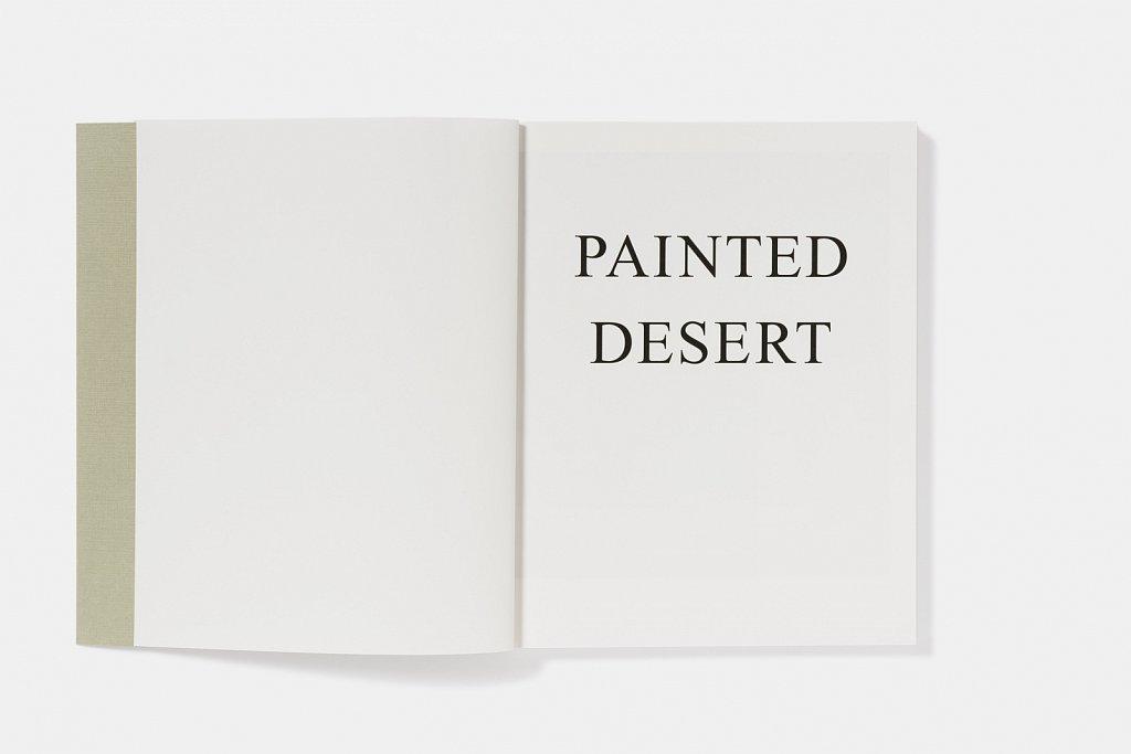 nico-weber-painted-desert-08-tino-grass-publishers.jpg